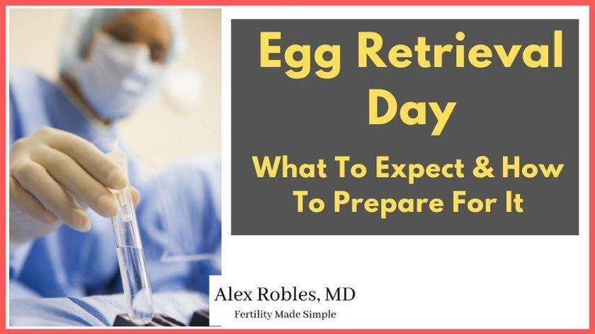 egg-retrieval-day