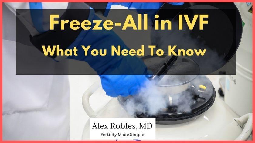 freeze-all-ivf